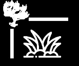 Logo dépalissage